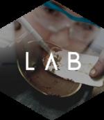 lab-ml